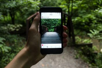 A person holding their phone in front of a forest, showing a picture of what they're seeing in real life in an instagram post on their phone.