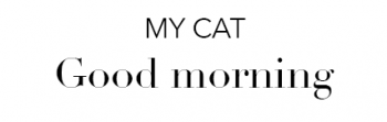 My Cat: Good Morning font example